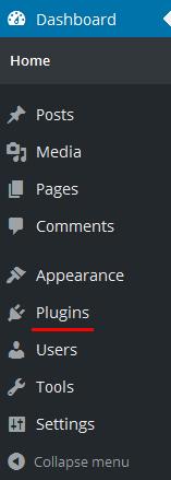 Choose Plugins From The Menu