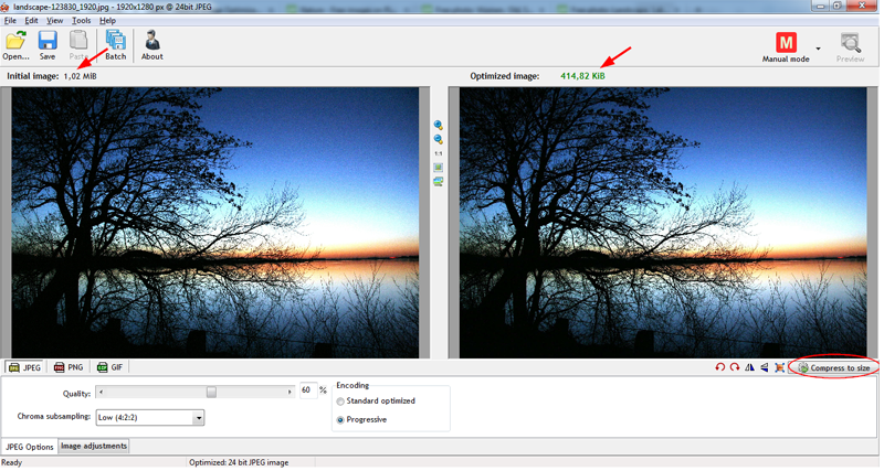RIOT optimized image