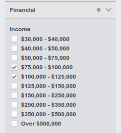 Facebook Audience Insights: Financial
