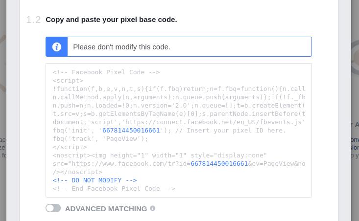 Copy and paste Pixel Code